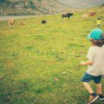 #MiercolesMudo #14 #MM Picos de Europa