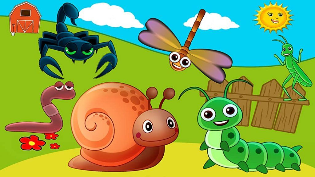 Learning Insects Names and Sounds