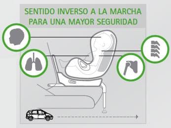 RACE- ilustracion acm mas seguridad