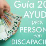 Guía 2021 de Ayudas para personas con Discapacidad