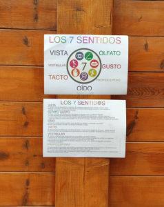 carteles de los 7 sentidos pegados en una pared de madera de la escuela